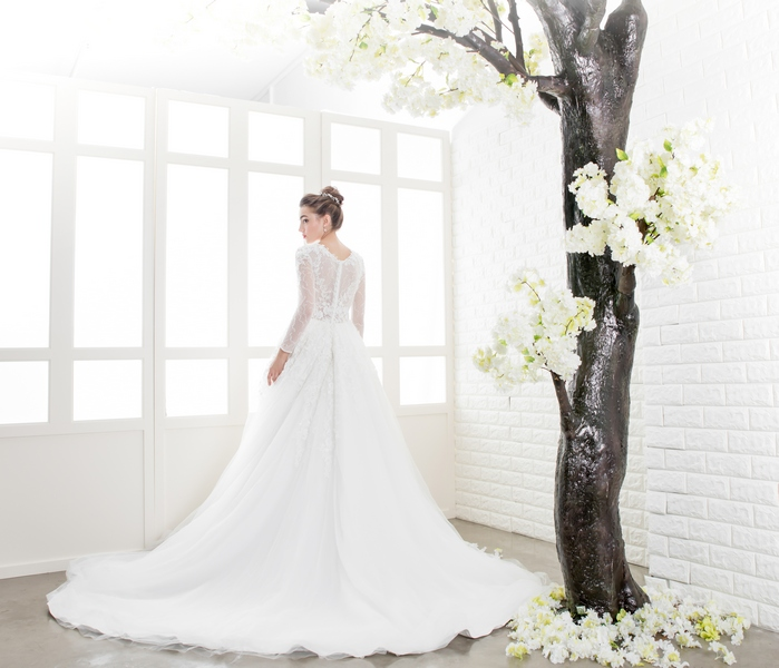 Long Sleeves Lace See Through Bodice Ballgown